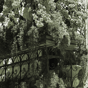 Staircase with bougainvillea